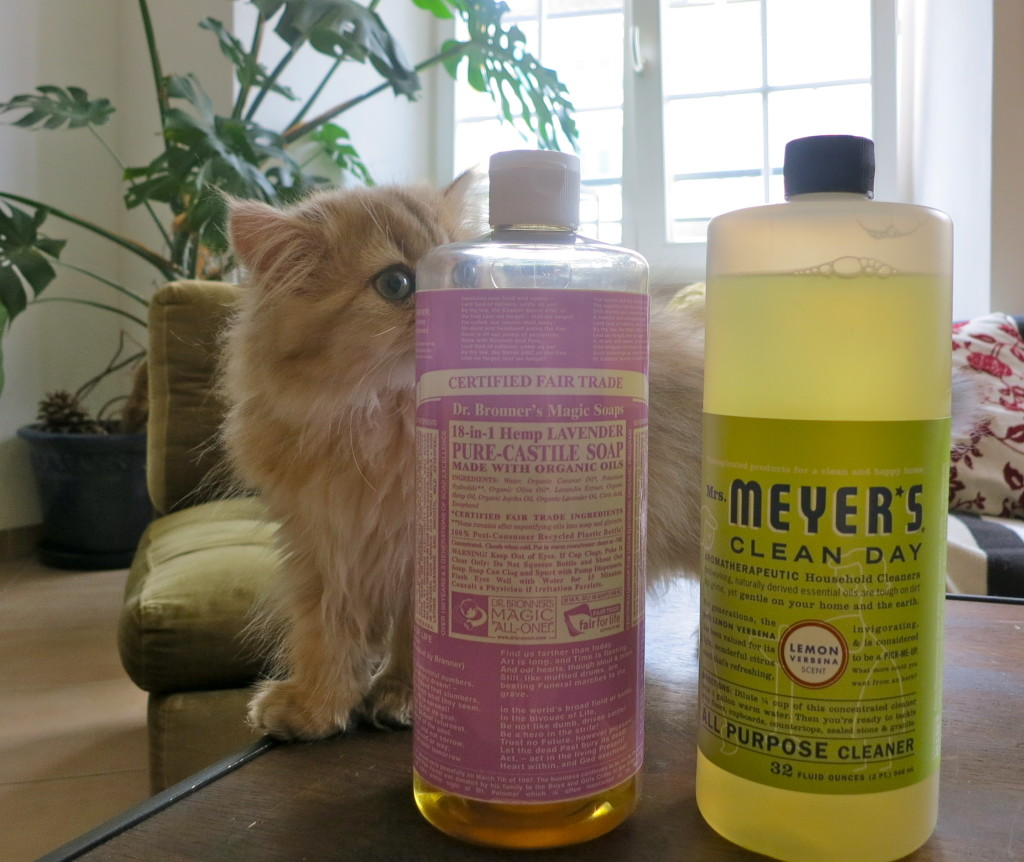 pet-friendly cleaners