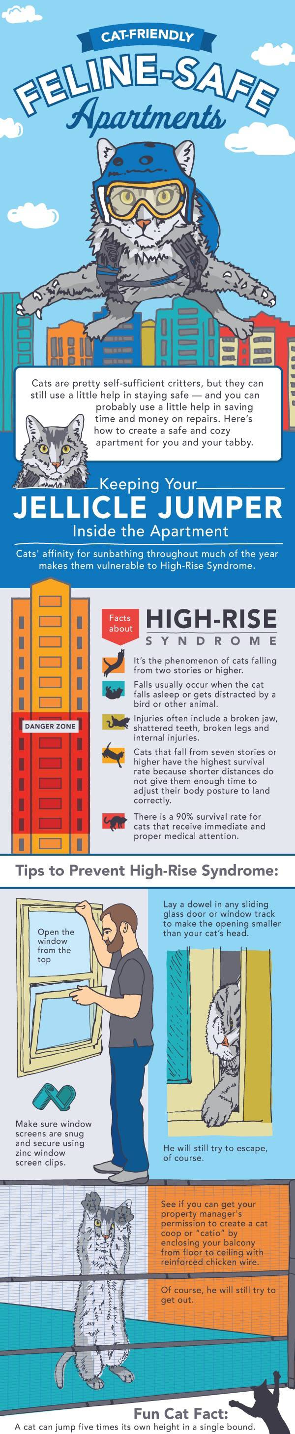 Cat Friendly Feline Safe Apartment, High-Rise Syndrome