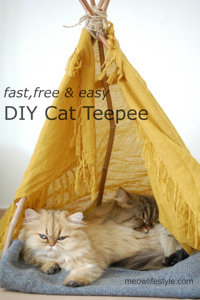 DIY Cat Teepee