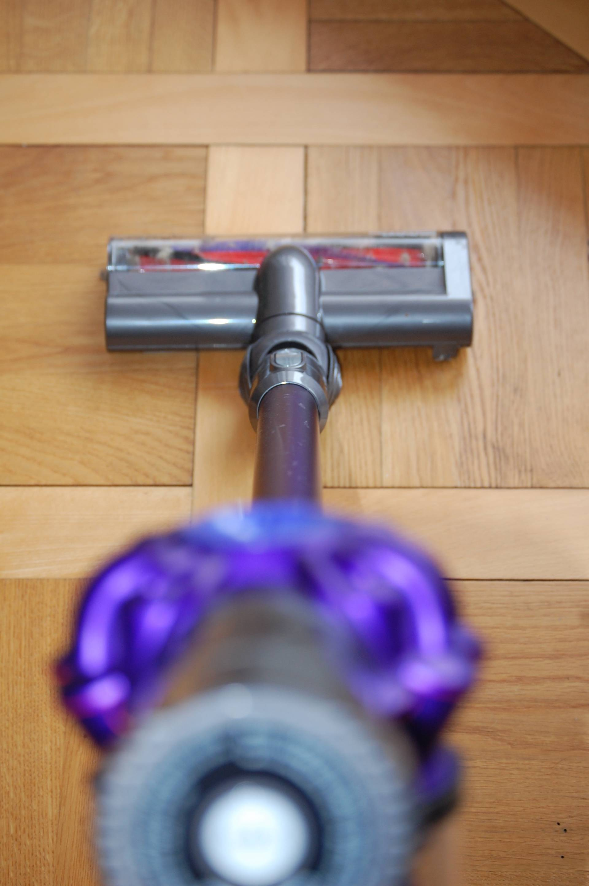 Dyson V6 Animal Pro for cat owners
