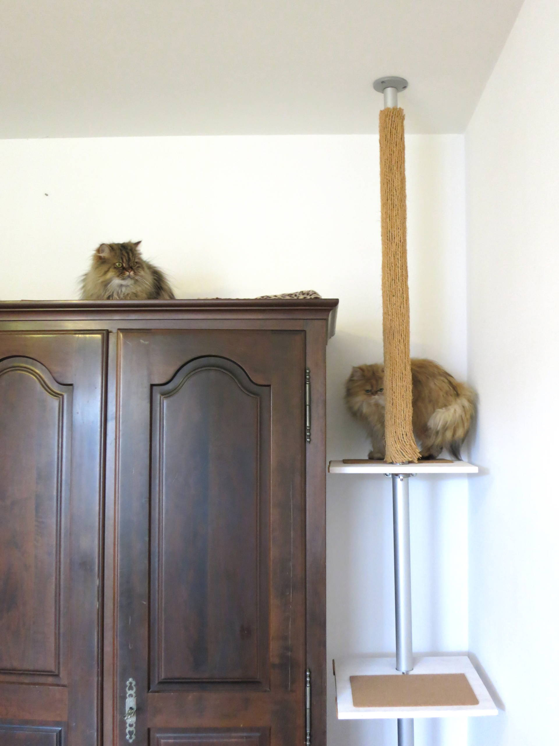 DIY ikea stolmen hack cat tree