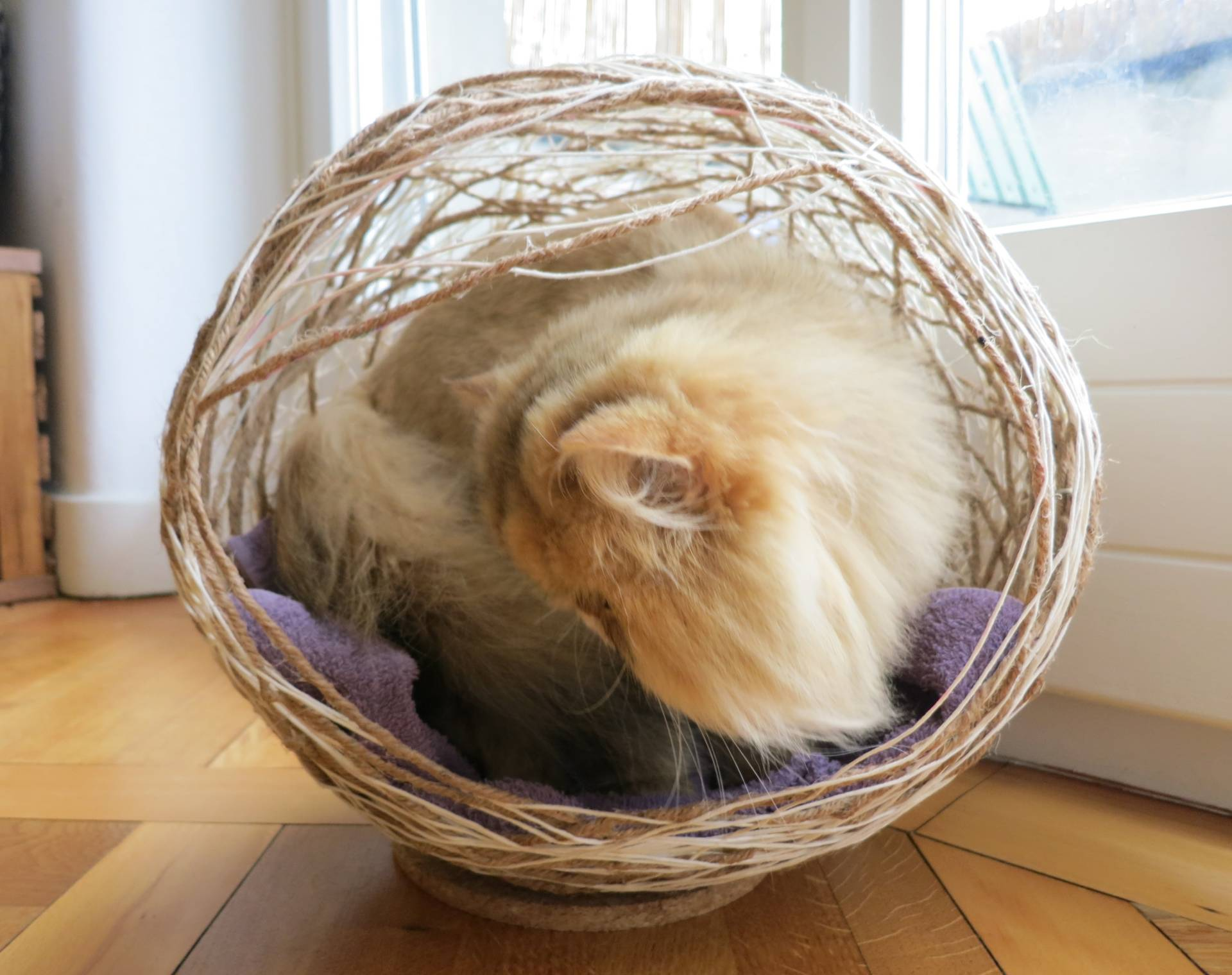 DIY yarn cat ball cave bed