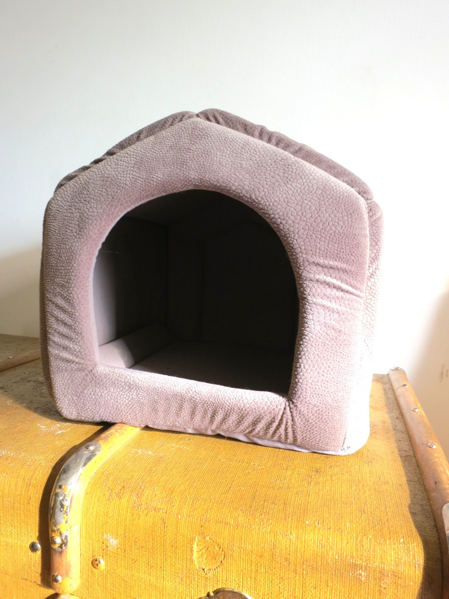 PAWZRoad pet house bed