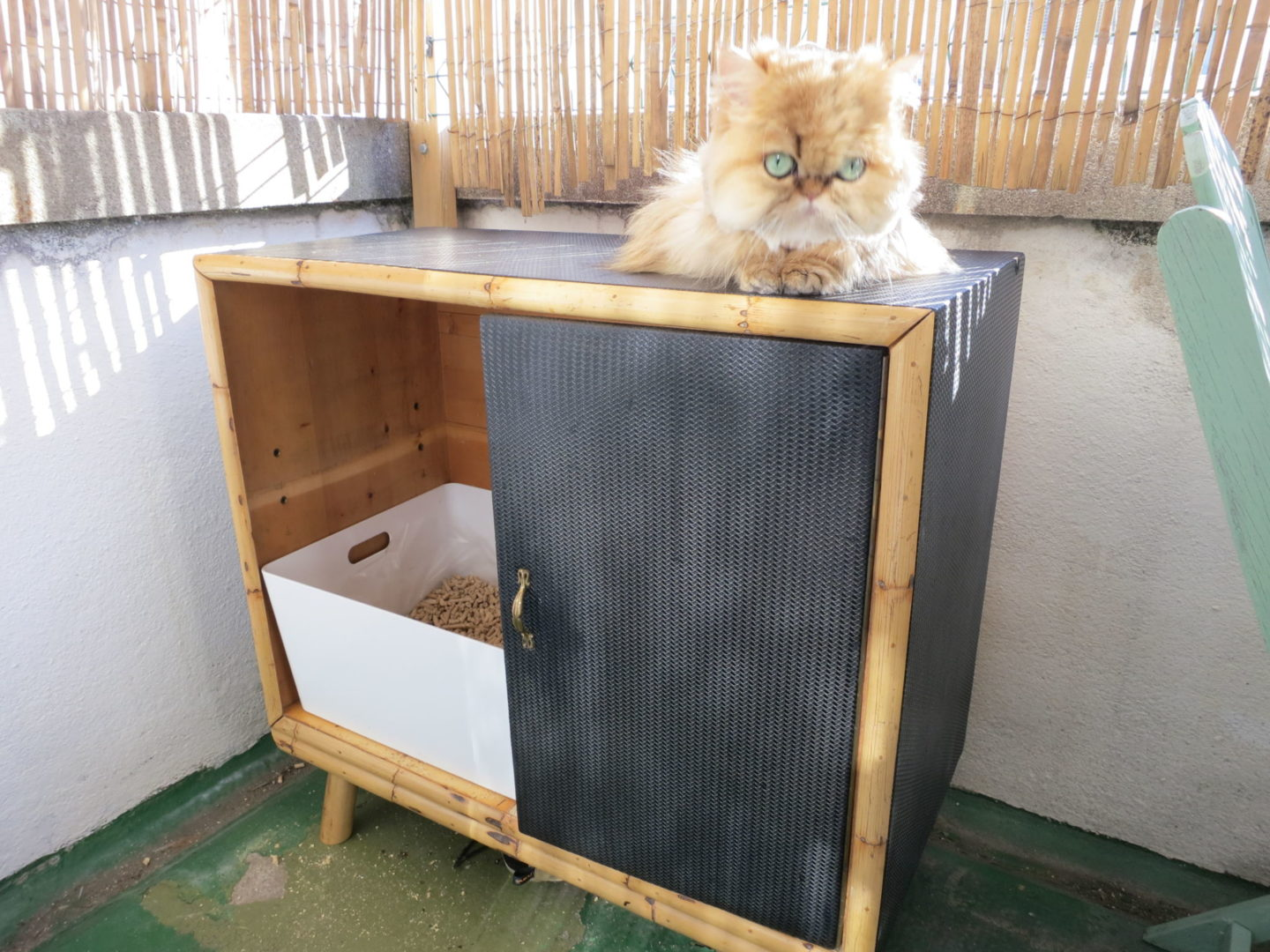 DIY litter box cabinet hack