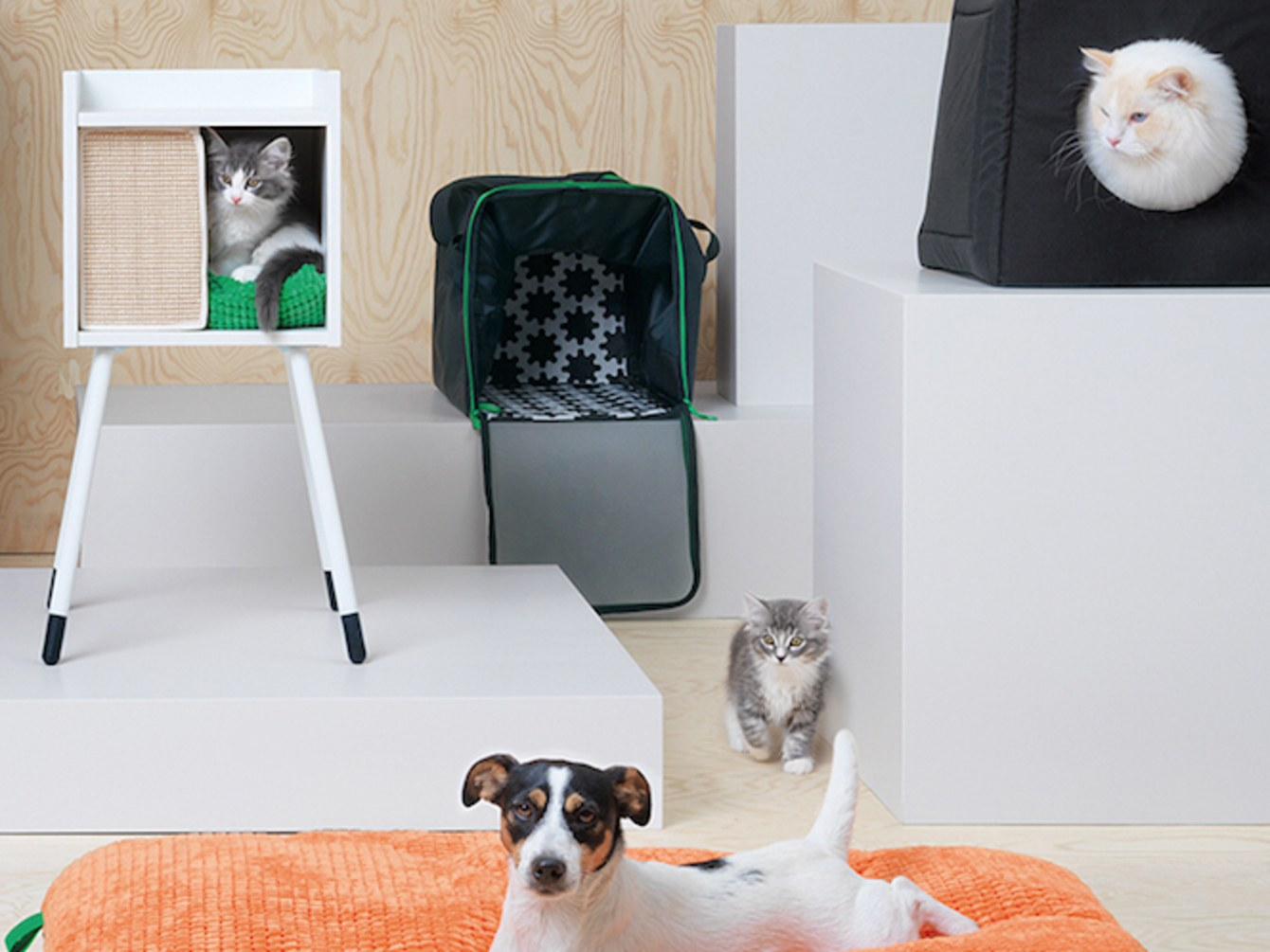 Ikea for cats finally meow lifestyle for Lurvig ikea