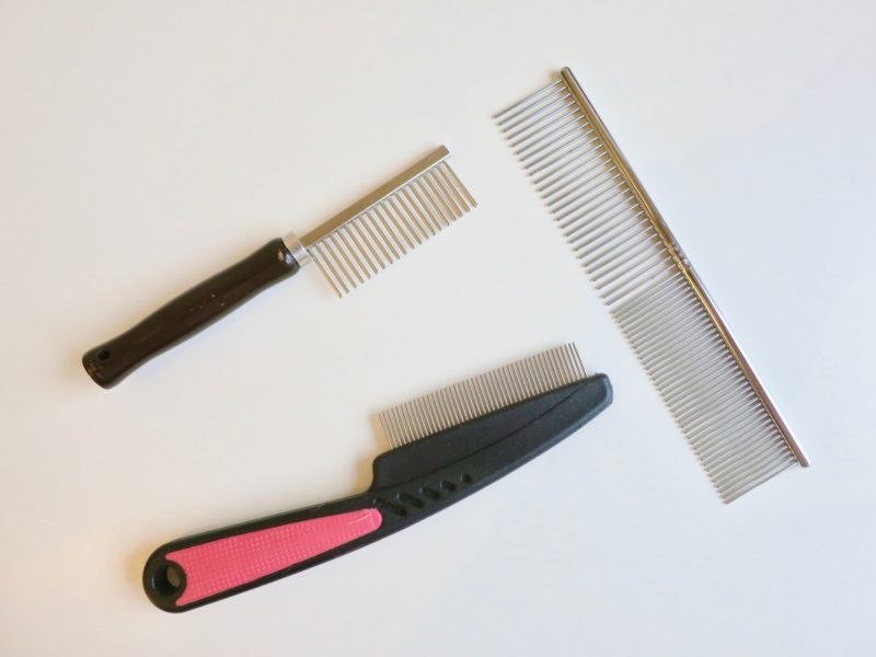 Favourite Grooming Tools for Persian Cats